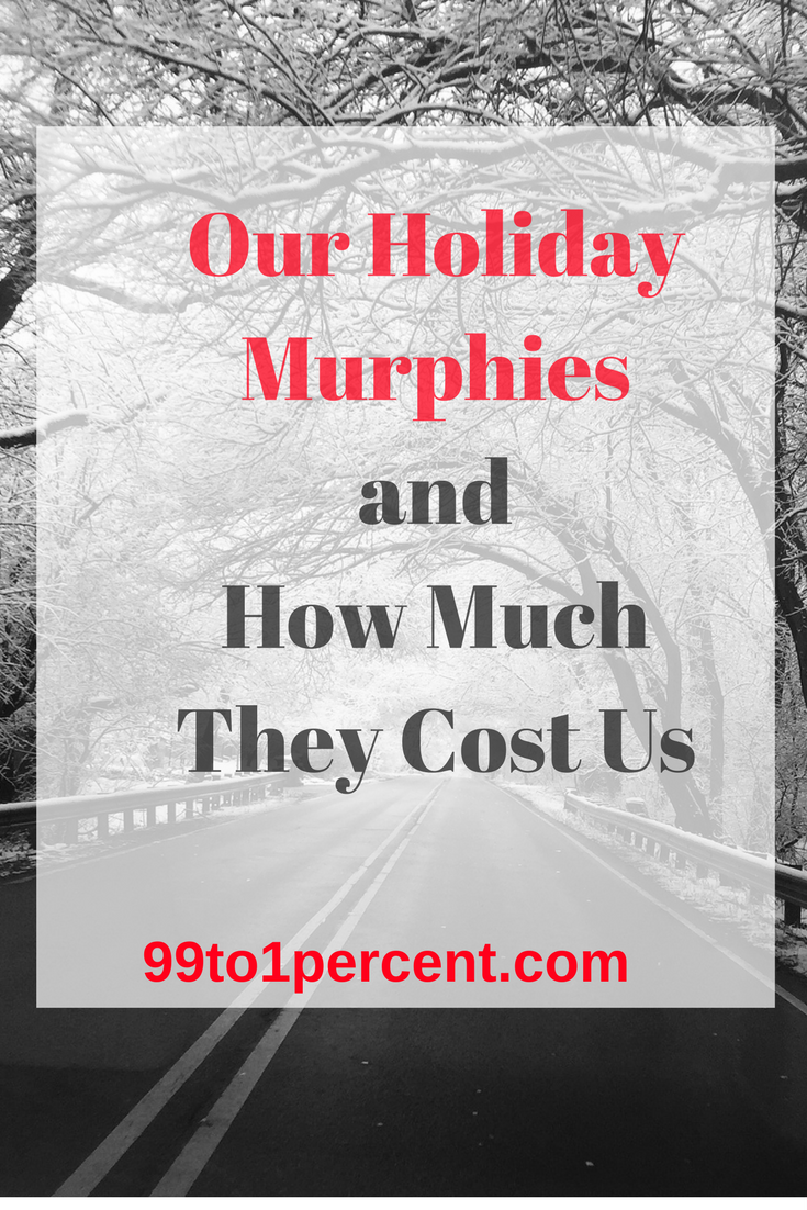 Our Holiday Murphies and How Much They Cost Us