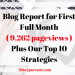 Blog Report for First Full Month (9,262 pageviews) and Our Strategies